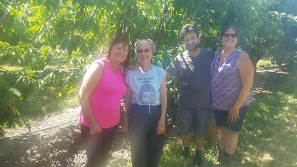 Mary Zanger stands with volunteers picking local cherries